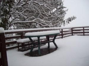 Măr nins Casa Cireșarilor